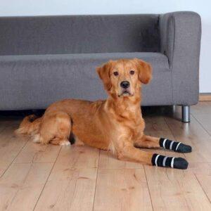 Hundesokker - Large/X-large